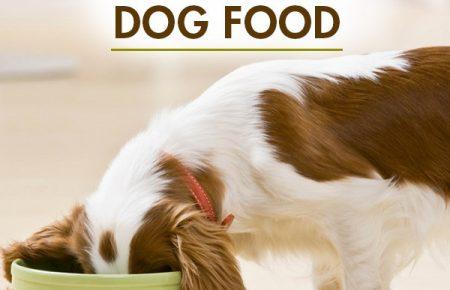 تهیه کردن غذای خانگی سگ ها