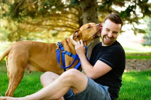 چگونه سگتون بهترین دوست شما بشه