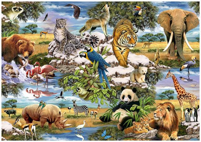 چگونه با حیوانات رفتار کنیم؟
