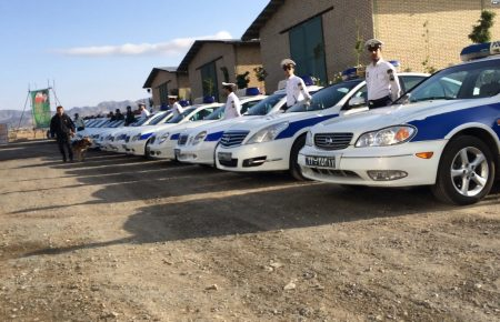 آموزش و تربیت سگ : همکاری با نیروی انتظامی, سگ پلیس