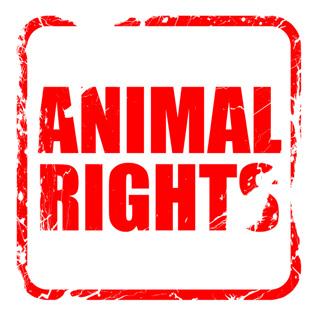 لایحه حمایت از حقوق حیوانات