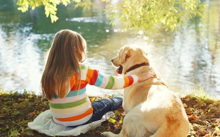 آموزش و تربیت سگ : در اطراف سگ ها مراقب فرزندان خود باشید