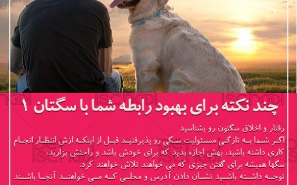 آموزش و تربیت سگ : چند نکته برای بهبود رابطه شما با سگتان 1