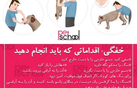 خفگی در سگ ها: اقداماتی که باید انجام دهید