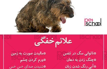 خفگی در سگ ها