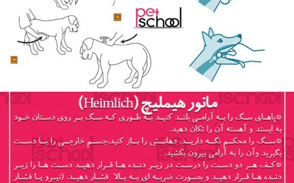 خفگی در سگ ها : مانور هیملیچ (Heimlich)
